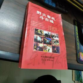 连环画:野火春风斗古城