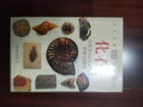 化石:全世界500多种化石的彩色图鉴