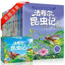 法布尔昆虫记(注音版 套装共10册 盒装)
