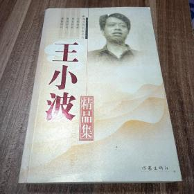 王小波精品集