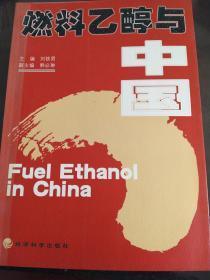 燃料乙醇与中国  (w)