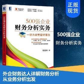 500强企业财务分析实务
