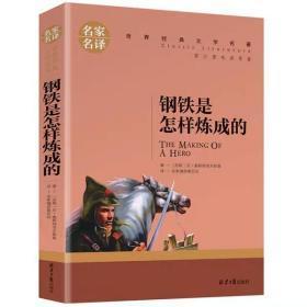 钢铁是怎样炼成的 名家名译世界经典文学名著 原汁原味读原著
