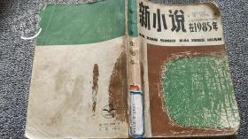 新小说在1985年