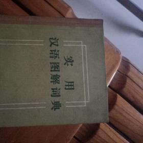 实用汉语图解词典