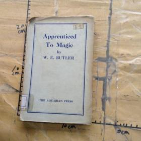 APPRENTICED TO MAGIC