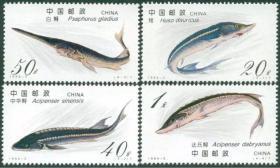 1994-3纪念特种邮票·一套全★保真全新★珍惜野生鱼类 ·鲟鱼,鳇、中华鲟、中华白鲟、达氏鲟·