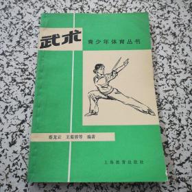武术 青少年体育丛书