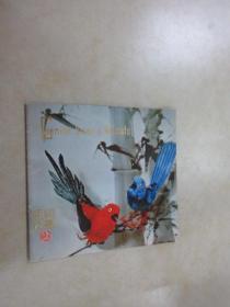 英文书  henille birds animals   48开