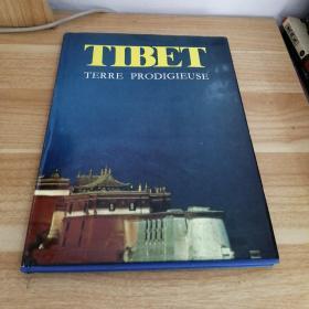 《TIBET》