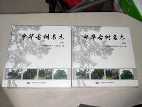 中华古树名木(上下册)