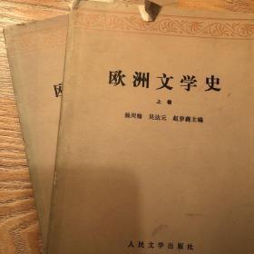 欧洲文学史 (上下两册)杨周翰 吴达元 赵萝蕤 主编