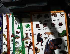 动物巨书系列《巨型怪兽》《虫虫世界》《滑溜动物》《掠食动物》《丛林动物》《夜行动物》【6册合售,精装】