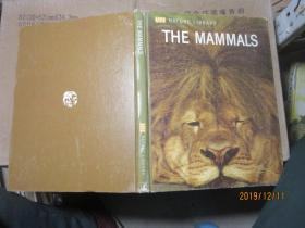 THE MAMMALS 精 B00353