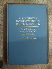 英文原版 U.S. BUSINESS INVOLVEMENT IN EASTERN EUROPE Case Studies of Hungary,Poland ,and Romania 美国在东欧的商业活动:匈牙利,波兰和罗马尼亚的案例研究