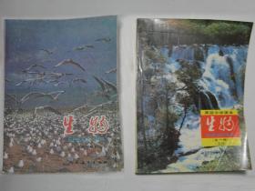 高中生物课本80后90九十年代