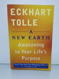 埃克哈特·托利  新世界:灵性的觉醒 A New Earth: Awakening to Your Lifes Purpose by Eckhart Tolle (灵性)英文原版书