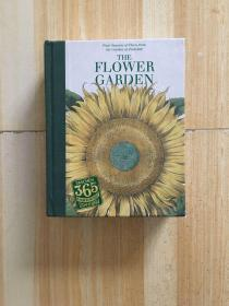 The Flower Garden 花园里的花卉与植物绘画 全彩绘