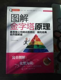 赢家习惯系列:图解金字塔原理