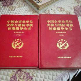 中国企事业单位安检与消防考核标准指导全书(上册.下册)全2册合集