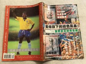 星条旗下的绿色风暴——94世界杯足球赛专辑(上)