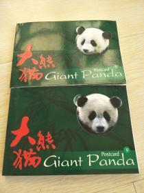 大熊猫明信片