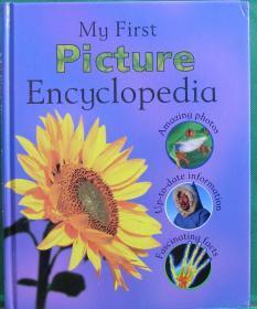英文原版绘本My first picture encyclopedia我的图片百科全书