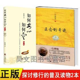 共2本 如何安心如何空第二版 正念的奇迹 书籍正版 一行禅师 宗教现代禅宗哲学心理学佛学信仰佛教的书籍