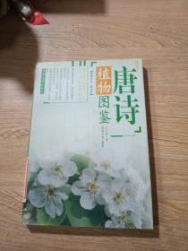 唐诗植物图鉴
