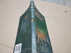 世界经典文化故事:野兽之美(全彩珍藏本)