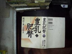日文书 丰乳肥臀 上