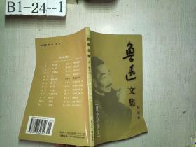 鲁迅文集导读本 第十七卷 【且介亭杂文】