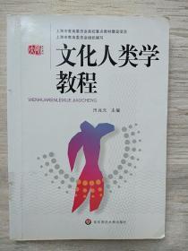 文化人类学教程 田兆元 华东师范大学