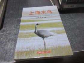 上海水鸟    库2