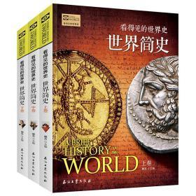 正版 上中下三卷看得见的世界史 世界简史 世界历史通史 极简世界史欧洲史 世界上下五千年 青少年历史读物课外阅读书籍