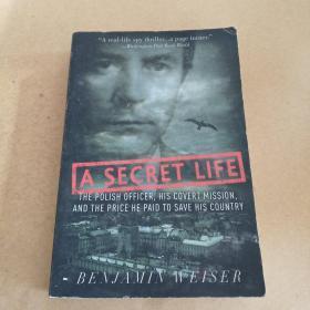 SecretLife:ThePolishOfficer,HisCovertMission,andthePriceHePaidtoSaveHisCountry