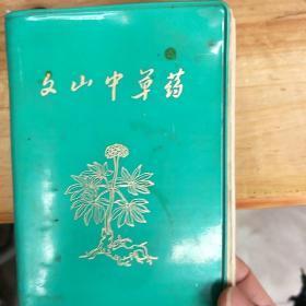文山中草药