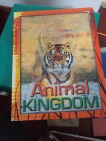 ANIMAL KINGDOM(动物王国)硬精装特殊版