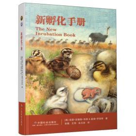 新孵化手册