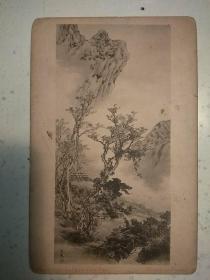 310。日本明信片50年代。14*9cm