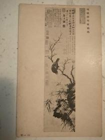 297。明信片50年代。明姚绶寒林鸲鹆。故宫信片。故宫博物院印行。14*9cm