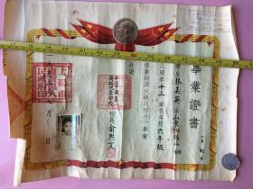 1955年,稀有品种,毕业证书,私立上海中国第一伤残儿童学校