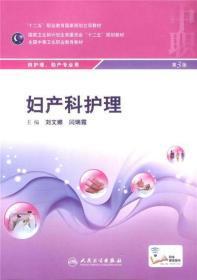妇产科护理 刘文娜 人民卫生出版社 9787117199186