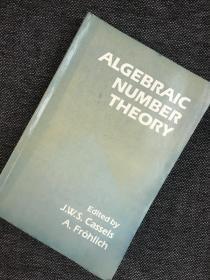 现货 Algebraic Number Theory
