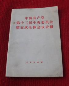 中国共产党第十三届中央委员会第五次全体会议公报--老书,一版一印--A5