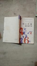 中学理科学习指导丛书 初一代数 辅导与练习 下册