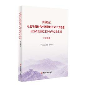 (党政)贯彻落实习近平新时代中国特色社会主义思想 在改革发展稳定中攻坚克难案例 文化建设