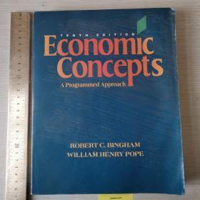 Economic concepts 经济概念 第十版 英文原版