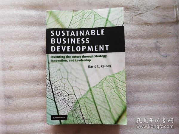 Sustainable Business Development:Inventing the Future Through Strategy, Innovation, and Leadership【小16开】外文原版
