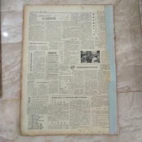 解放军报1982年4月